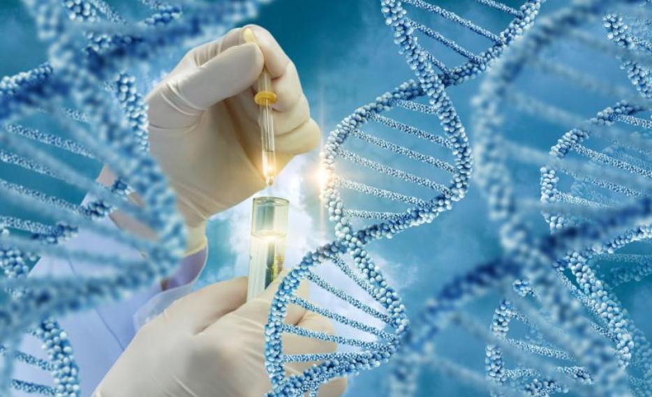 თანდაყოლილი ანომალიების და გენეტიკური დაავადებების პრენატალური დიაგნოსტიკა