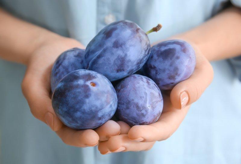 ქლიავი - გემრიელი და სასარგებლო ადრეული ასაკიდან