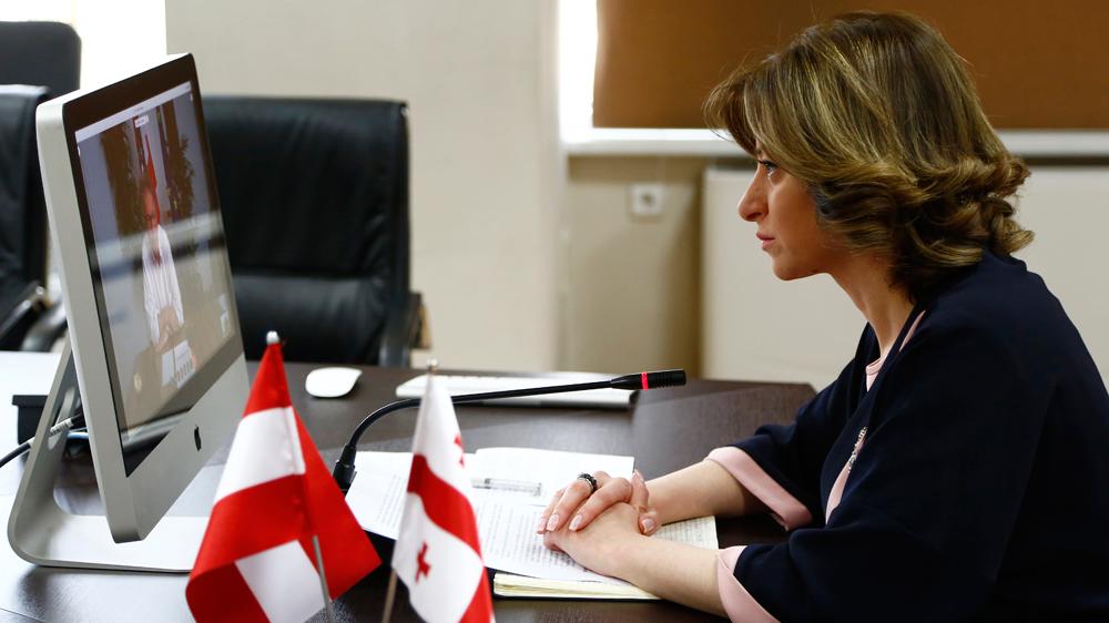 ეკატერინე ტიკარაძემ ავსტრიის ჯანდაცვის მინისტრთან ონლაინ შეხვედრა გამართა