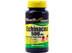 ექინაცია / Echinacea